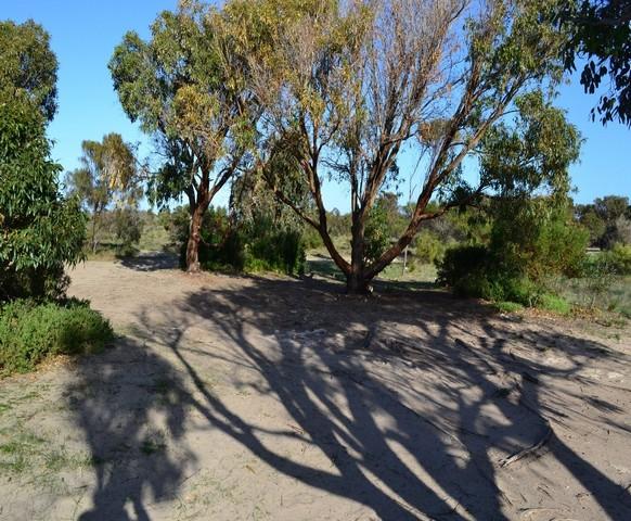 Goldsmiths-Beach-camp-ground.jpg