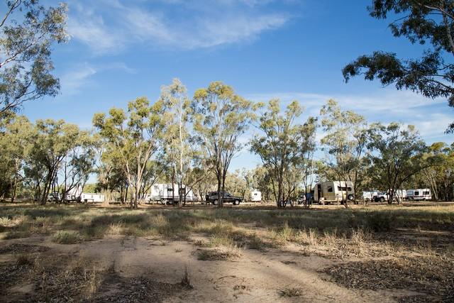 Collarenebri-Primitive-Campground-Shady-Sites.jpg