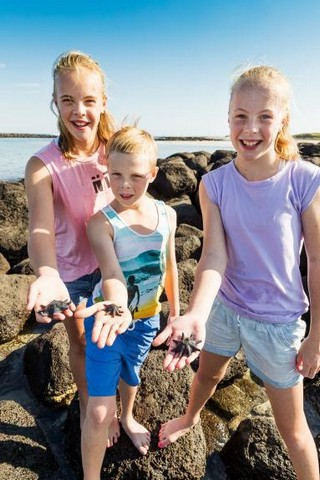 Beach-Activity-at-Killarney-Beach-Camping-Reserve.jpg