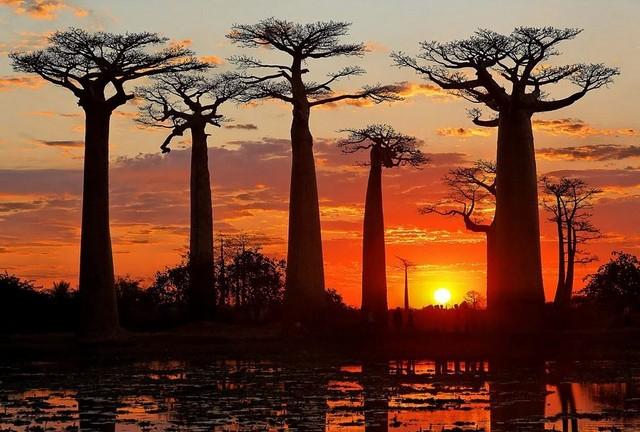 Self-Drive-Adventures-Madagascar.jpg