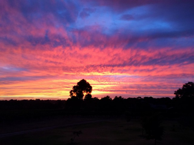 Jarvis_Estate_Winery_and_Nature_Based_Camping-Sunset