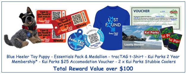 prize pack v2
