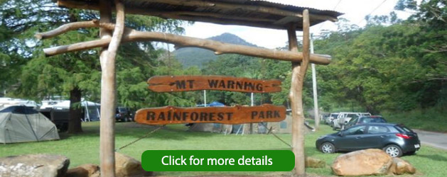 mt-warning-rainforest-park