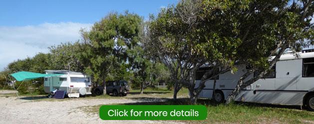 ss-dorrigo-camping-area-inskip-point