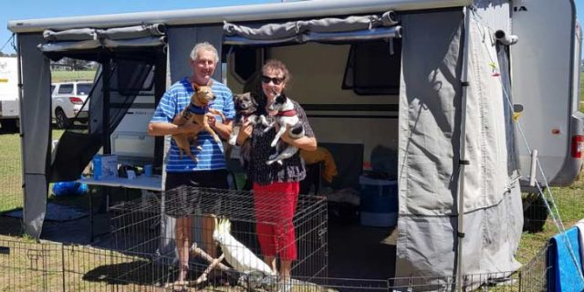 Travelling with Pets – With Ron & Annette