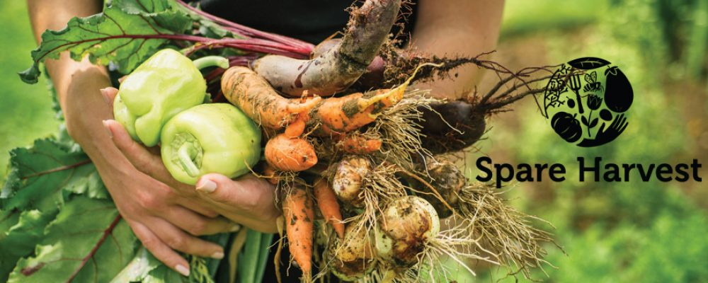Find Fresh Local Produce While You Travel